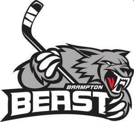 My local ECHL team