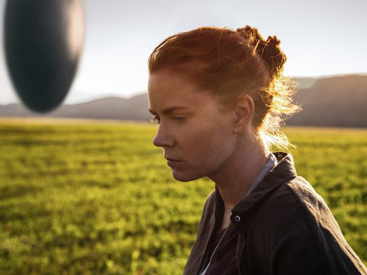 Amy Adams and the Aliens of Arrival.